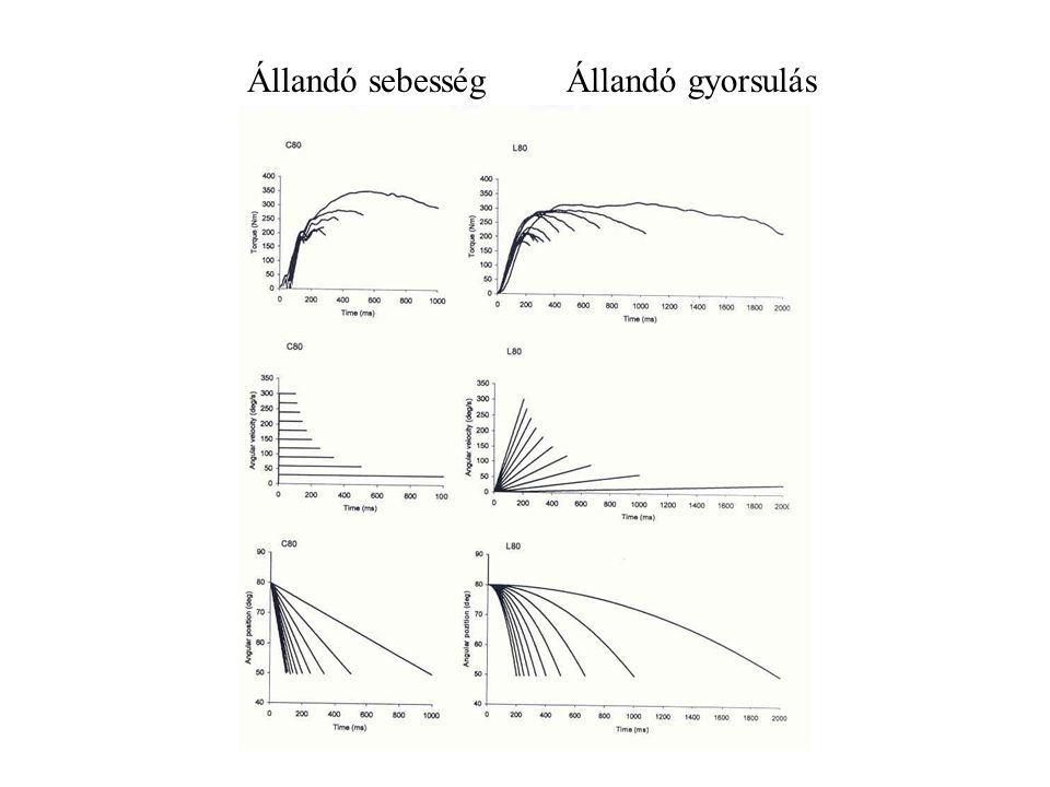 V t V t F t F t IzokinetikusIzotóniás Állandó sebesség Állandó feszülés Változó sebesség, állandó gyorsulás Változó feszülés