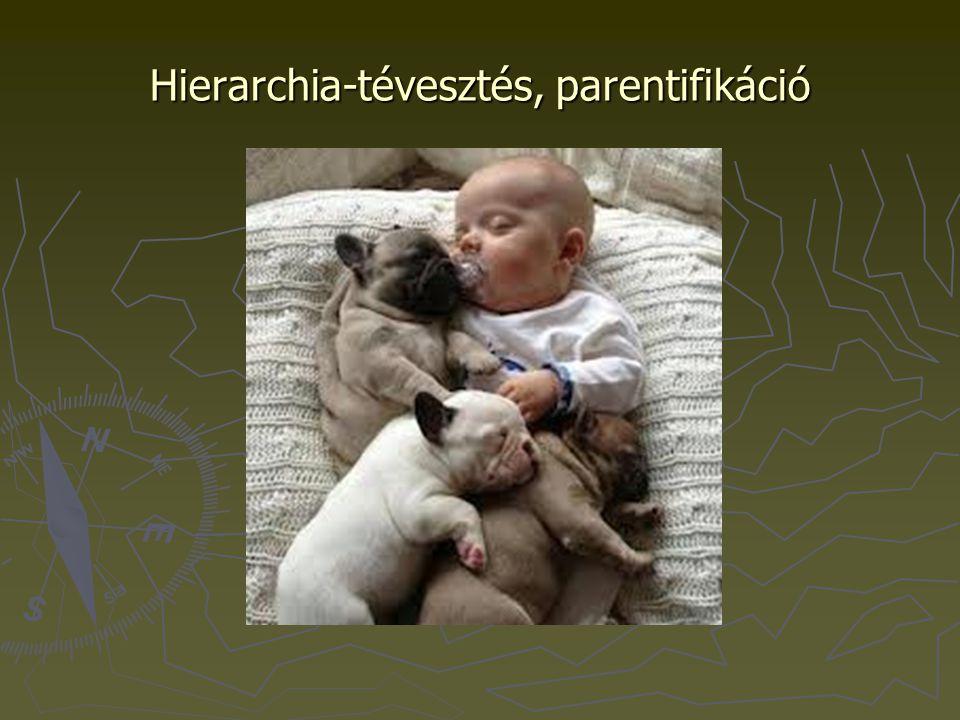 Egészséges család –egészséges családtagok Szelekciós ill.