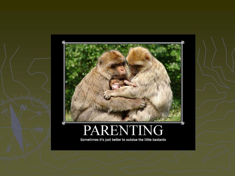 ► Biztonságos anyai viselkedés terhesség alatt ► Megfelelő anyai gondoskodás ► Támogató család ► Pozitív interakciós minták a családban