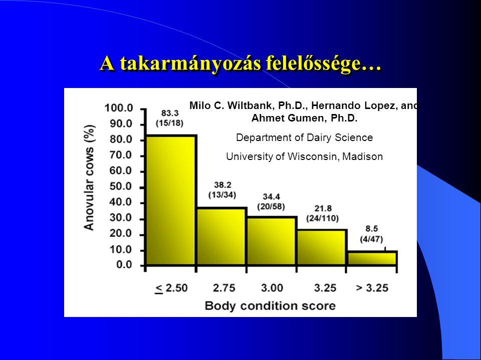A szaporodásbiológiai munka hatékonyságát jelentősen befolyásolják a 1. 1.takarmányozás (elsősorban ENERGIA, de adag, takarmányozás technológia stb. i