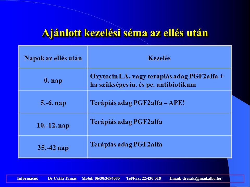 Saját felmérések 2002-2004.Két ellés közti idő Szervízperi -ódus Az első termékenyítés átl.