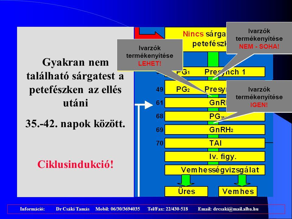 Információ: Dr Csáki Tamás Mobil: 06/30/3694035 Tel/Fax: 22/430-518 Email: drcsaki@mail.alba.hu RESYNCH(?): GnRH a PD előtti 7. napon RESYNCH(?): GnRH