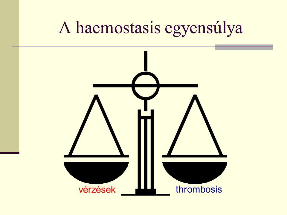 vérzések thrombosis A haemostasis egyensúlya