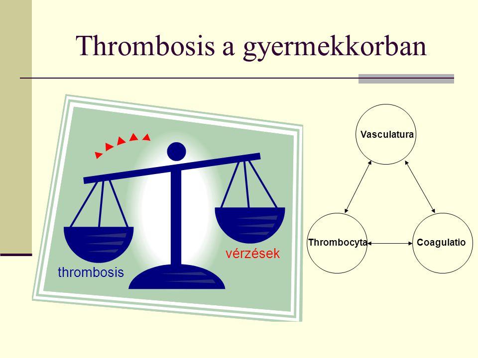 Thrombosis a gyermekkorban vérzések thrombosis Vasculatura ThrombocytaCoagulatio