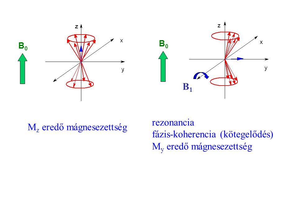 B0B0 B1B1 rezonancia fázis-koherencia (kötegelődés) M y eredő mágnesezettség B0B0 M z eredő mágnesezettség y x z