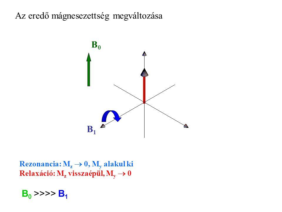 B0B0 Az eredő mágnesezettség megváltozása B1B1 Rezonancia: M z  0, M y alakul ki Relaxáció: M z visszaépül, M y  0 B 0 >>>> B 1
