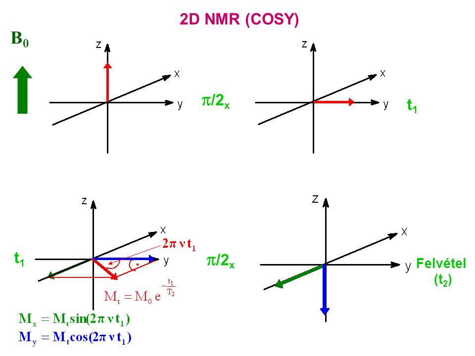 B0B0  /2 x t1t1 Felvétel (t 2 ) t1t1 2D NMR (COSY)