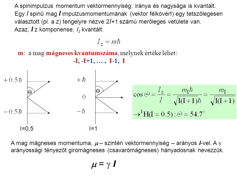 A spinimpulzus momentum vektormennyiség: iránya és nagysága is kvantált.