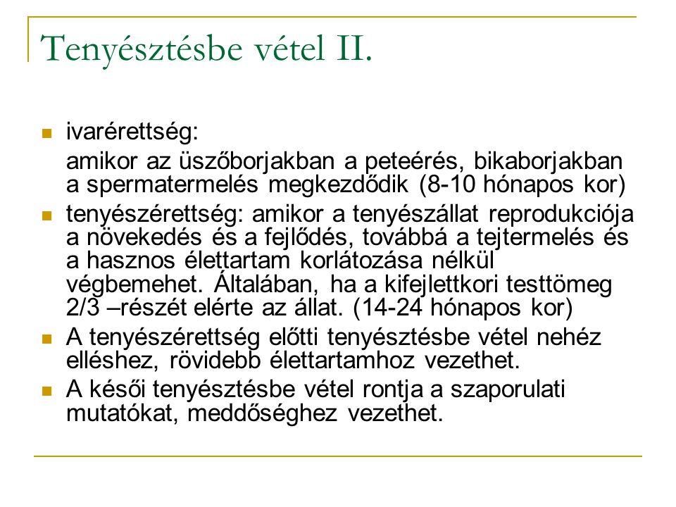 Tenyésztésbe vétel II.  ivarérettség: amikor az üszőborjakban a peteérés, bikaborjakban a spermatermelés megkezdődik (8-10 hónapos kor)  tenyészéret