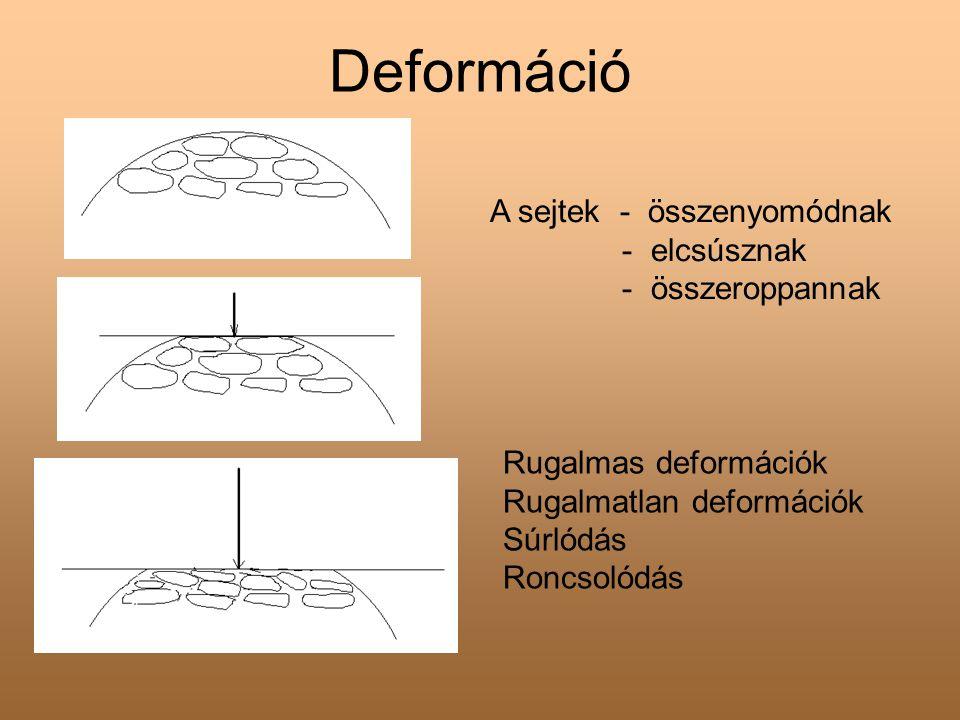 Deformáció A sejtek - összenyomódnak - elcsúsznak - összeroppannak Rugalmas deformációk Rugalmatlan deformációk Súrlódás Roncsolódás
