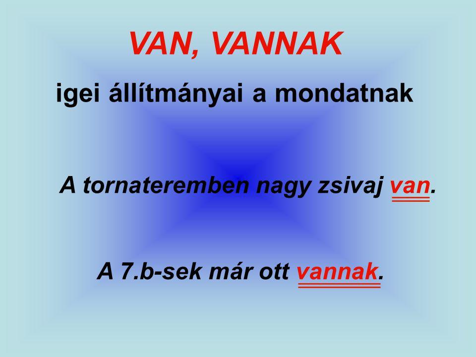 VAN, VANNAK igei állítmányai a mondatnak A tornateremben nagy zsivaj van. A 7.b-sek már ott vannak.