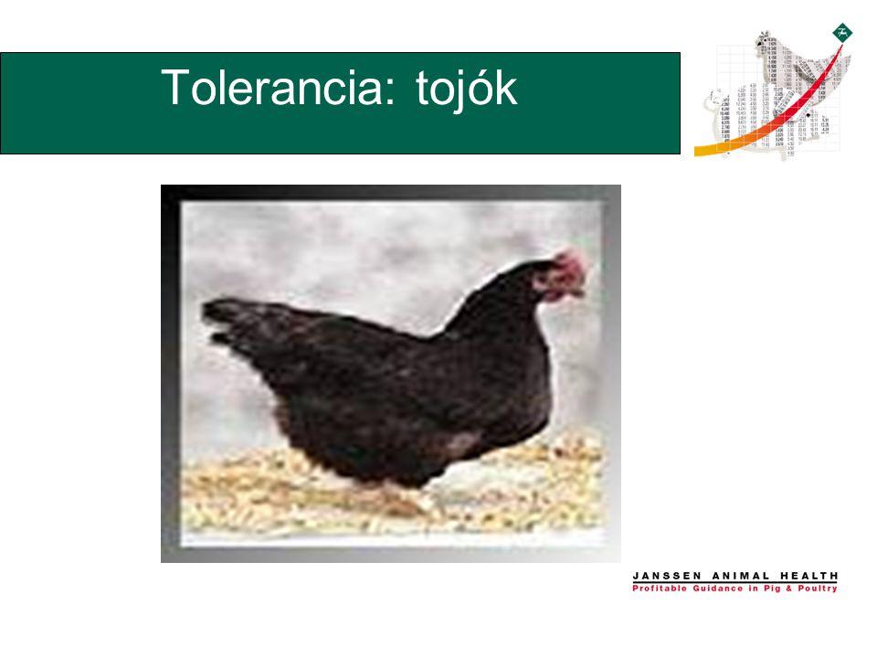 Tolerancia: tojók