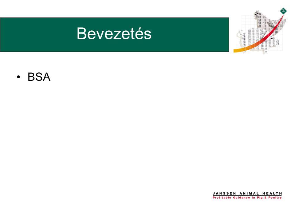 •BSA Bevezetés