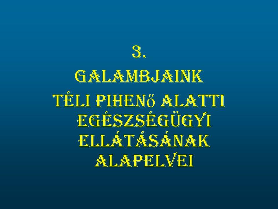 3. Galambjaink Téli pihen ő alatti egészségügyi ellátásának alapelvei