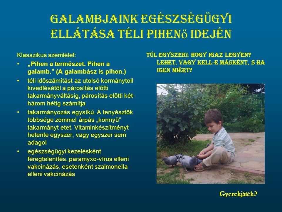 """Galambjaink egészségügyi ellátása téli pihen ő idején Klasszikus szemlélet: •""""Pihen a természet. Pihen a galamb."""" (A galambász is pihen.) •téli időszá"""