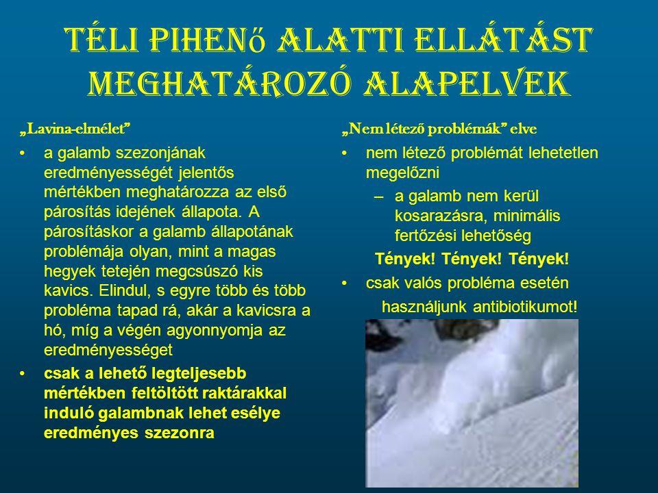 """Téli pihen ő alatti ellátást meghatározó alapelvek """"Lavina-elmélet •a galamb szezonjának eredményességét jelentős mértékben meghatározza az első párosítás idejének állapota."""