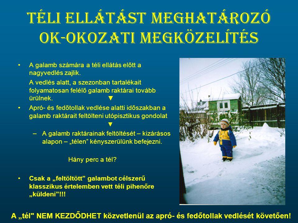 Téli ellátást meghatározó ok-okozati megközelítés •A galamb számára a téli ellátás előtt a nagyvedlés zajlik. A vedlés alatt, a szezonban tartalékait