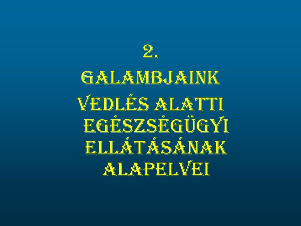 2. Galambjaink vedlés alatti egészségügyi ellátásának alapelvei