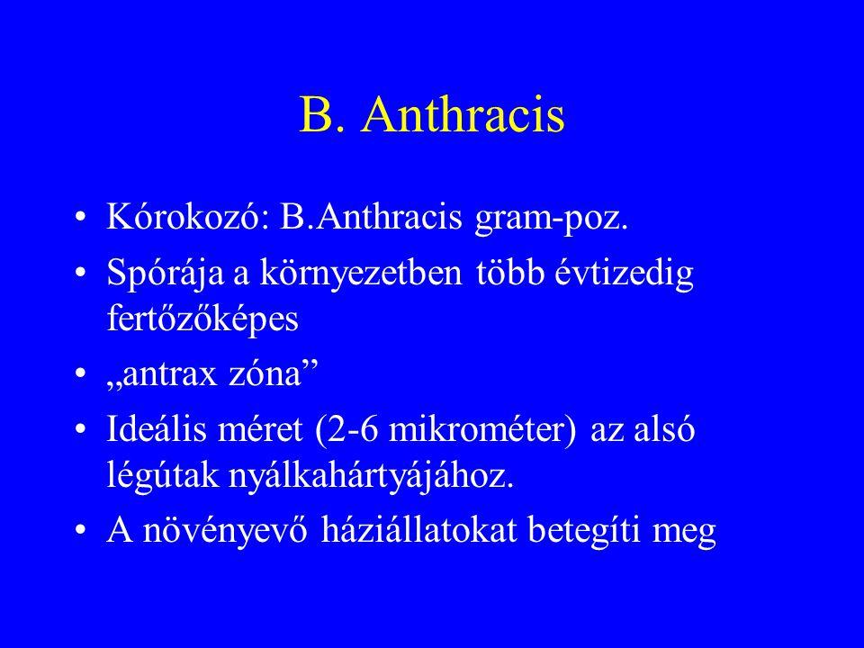 Az anthrax,mint fegyver •1950: az USA listára veszi •Később a Szovjetunió és Irak •1979 Szverdlovszk, legalább 66 halott(szokatlan és váratlan epidemiológia) •Becslés: 500.000 lakosú város felett szélbe engedve(50 kg) 3 nap múlva 125.000 fertőzött, 95.000 halott.