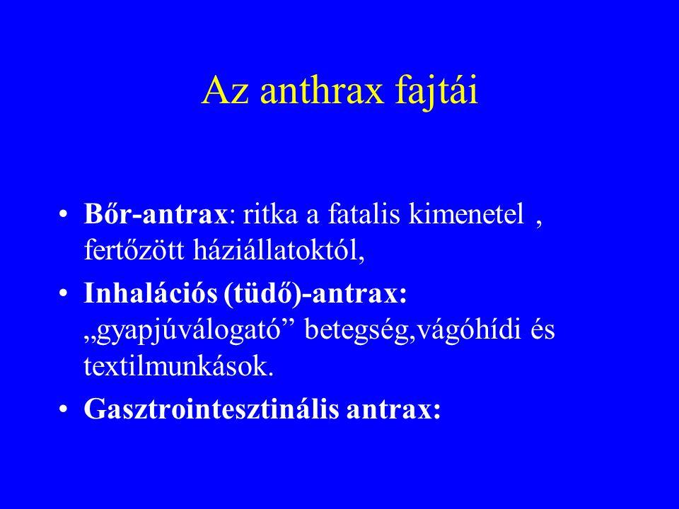 """B. Anthracis •Kórokozó: B.Anthracis gram-poz. •Spórája a környezetben több évtizedig fertőzőképes •""""antrax zóna"""" •Ideális méret (2-6 mikrométer) az al"""