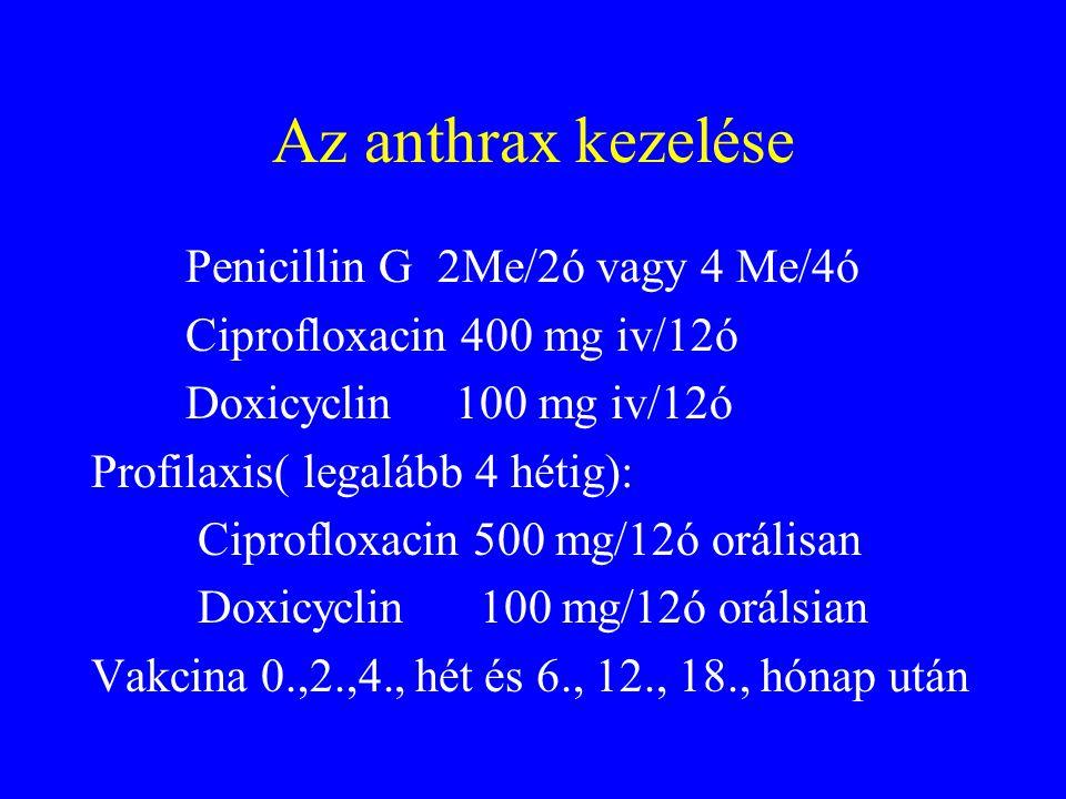 Inhalációs anthrax •1-6 nap inkubációs idő (43!!!) •Első fázis: myalgia,láz,fejfájás,inproduktív köhögés,mellkasi diszkomfort •Második fázis: magas láz, diszpnoé,stridor, cianózis, sokk.Az esetek 50 %-ban mellkasfali ödéma és véres meningitisz
