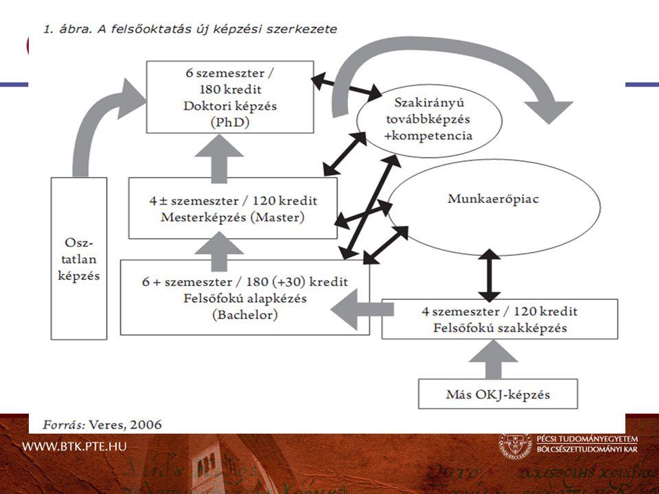Szociális és közösségi terepgyakorlatok vezetése szakirányú továbbképzési szak I.