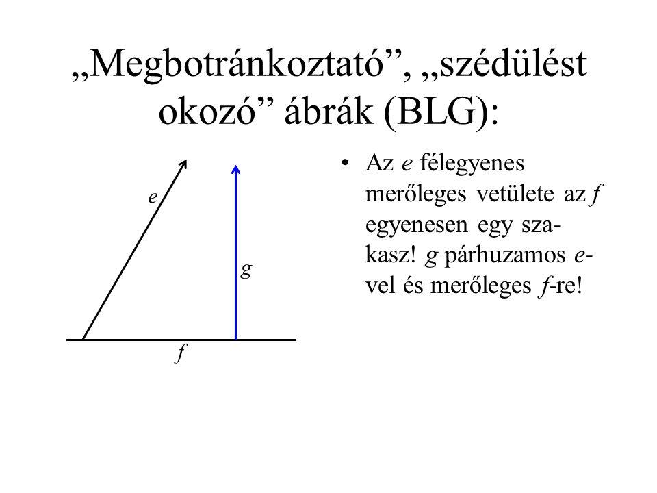 """""""Megbotránkoztató , """"szédülést okozó ábrák (BLG): •Az e félegyenes merőleges vetülete az f egyenesen egy sza- kasz."""