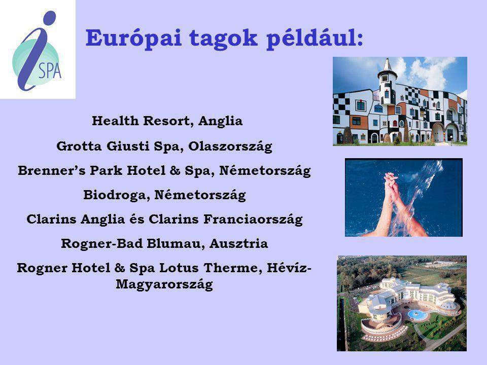 A tagok kategóriái, Club Spa-k Óceánjáró hajók Day-Spa-k Szépség- és egészségfarmok Gyógyászati központok Gyógyfürdők Vitál & Wellness Szállodák Spa á