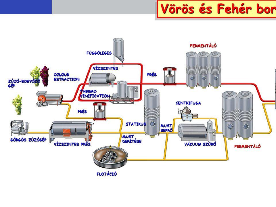 FÜGGŐLEGES VÍZSZINTES THERMOVINIFICATION PRÉS FERMENTÁLÓ Vörös és Fehér bor COLOURESTRACTION GÖRGŐS ZÚZÓGÉP ZÚZÓ-BOGYÓZÓGÉP VÍZSZINTES PRÉS PRÉS FLOTÁ
