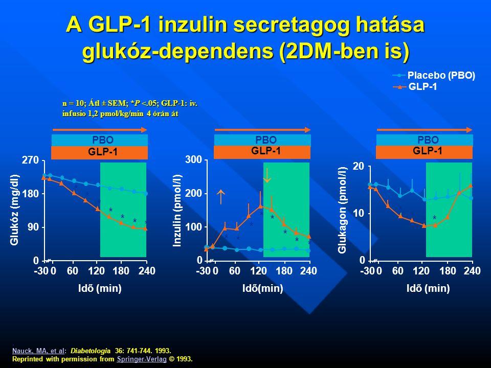 A GLP-1 inzulin secretagog hatása glukóz-dependens (2DM-ben is).
