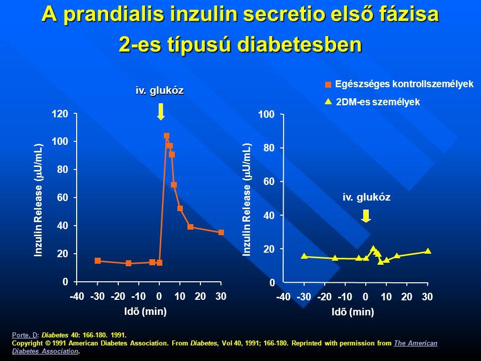 Idő (min) A prandialis inzulin secretio első fázisa 2-es típusú diabetesben A prandialis inzulin secretio első fázisa 2-es típusú diabetesben iv.