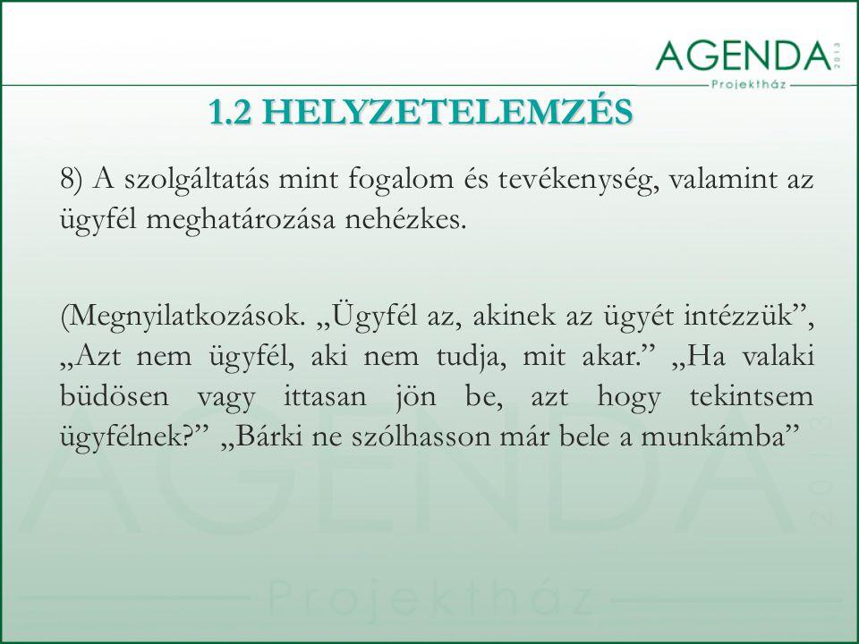 8) A szolgáltatás mint fogalom és tevékenység, valamint az ügyfél meghatározása nehézkes.