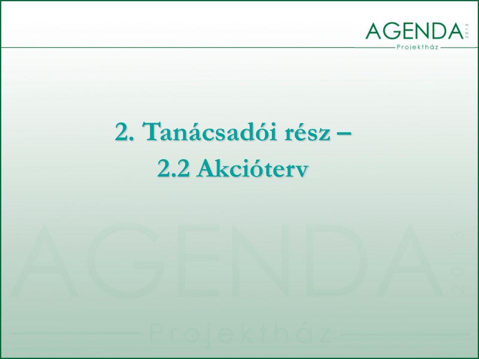 2. Tanácsadói rész – 2.2 Akcióterv