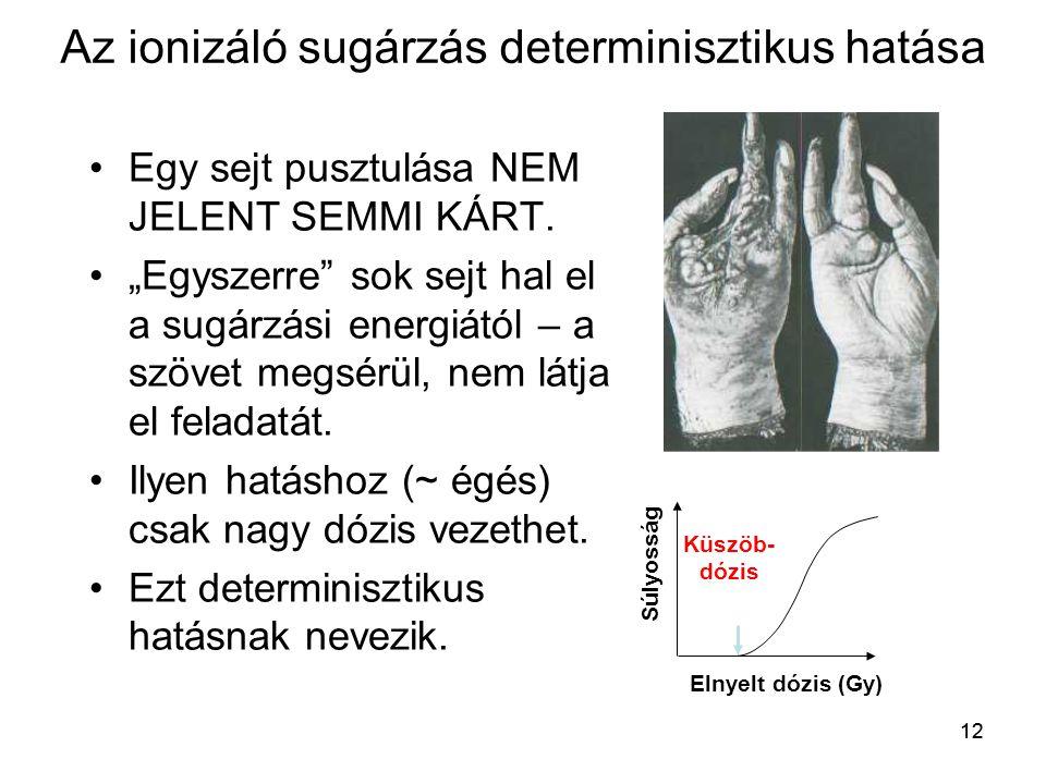 """12 Az ionizáló sugárzás determinisztikus hatása •Egy sejt pusztulása NEM JELENT SEMMI KÁRT. •""""Egyszerre"""" sok sejt hal el a sugárzási energiától – a sz"""