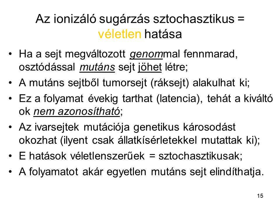 15 Az ionizáló sugárzás sztochasztikus = véletlen hatása •Ha a sejt megváltozott genommal fennmarad, osztódással mutáns sejt jöhet létre; •A mutáns se