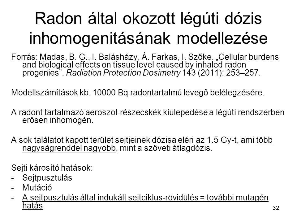 """32 Radon által okozott légúti dózis inhomogenitásának modellezése Forrás: Madas, B. G., I. Balásházy, Á. Farkas, I. Szőke. """"Cellular burdens and biolo"""