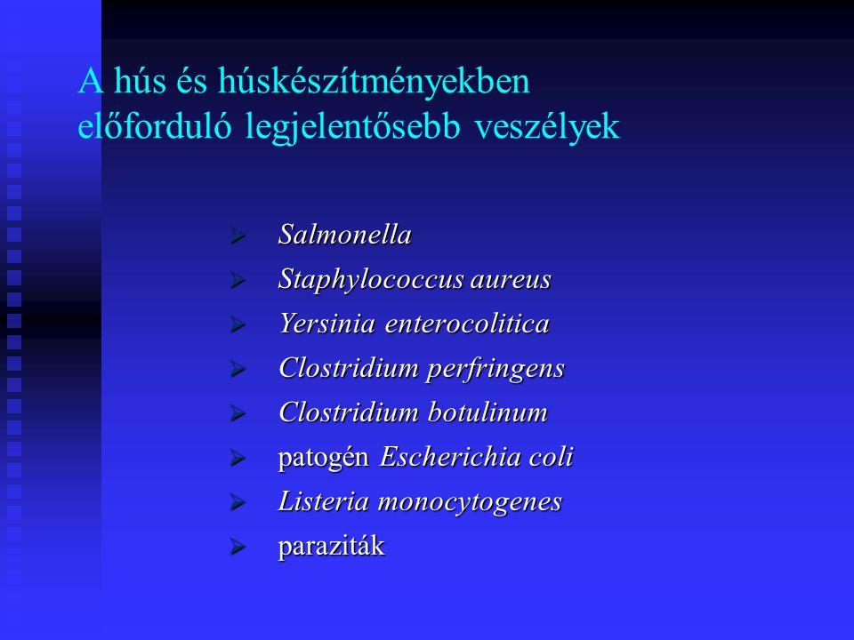 A hús és húskészítményekben előforduló legjelentősebb veszélyek  Salmonella  Staphylococcus aureus  Yersinia enterocolitica  Clostridium perfringe