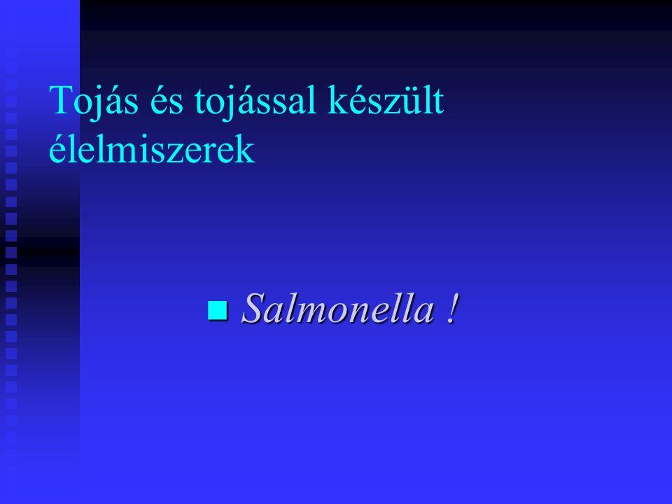 Tojás és tojással készült élelmiszerek  Salmonella !
