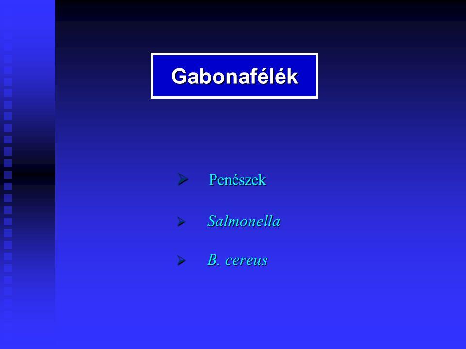  Salmonella  B. cereus Gabonafélék
