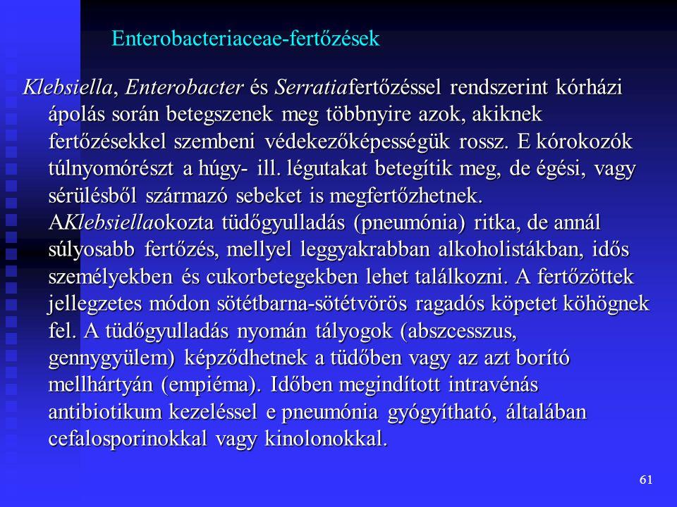 61 Enterobacteriaceae-fertőzések Klebsiella, Enterobacter és Serratiafertőzéssel rendszerint kórházi ápolás során betegszenek meg többnyire azok, akik