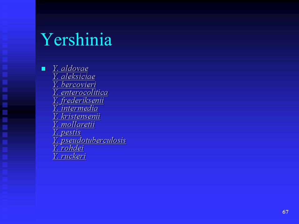 67 Yershinia  Y. aldovae Y. aleksiciae Y. bercovieri Y. enterocolitica Y. frederiksenii Y. intermedia Y. kristensenii Y. mollaretii Y. pestis Y. pseu