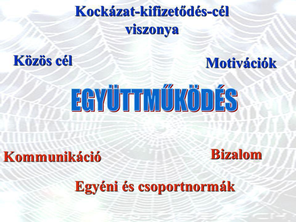 Kommunikáció Motivációk Egyéni és csoportnormák Közös cél Kockázat-kifizetődés-célviszonyaBizalom