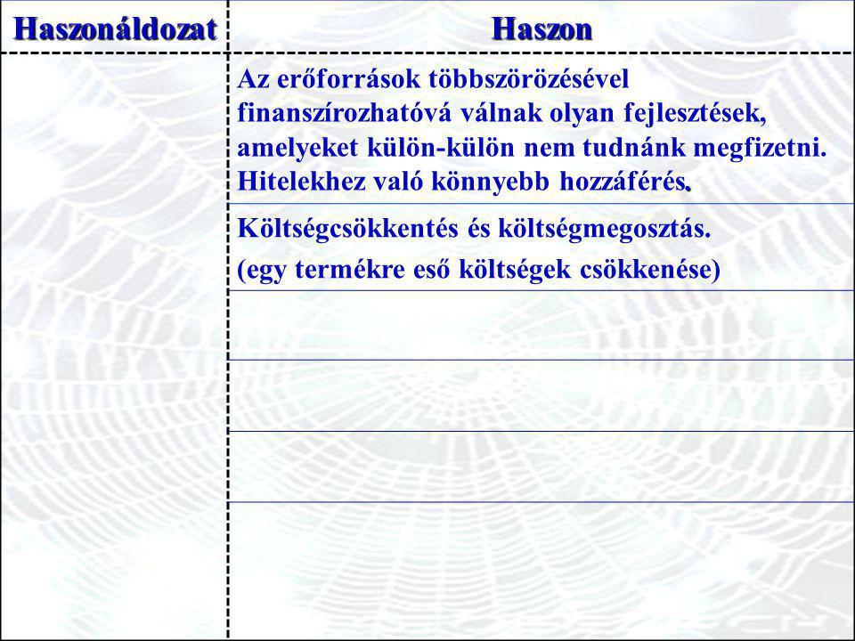 HaszonáldozatHaszon Költségcsökkentés és költségmegosztás. (egy termékre eső költségek csökkenése)