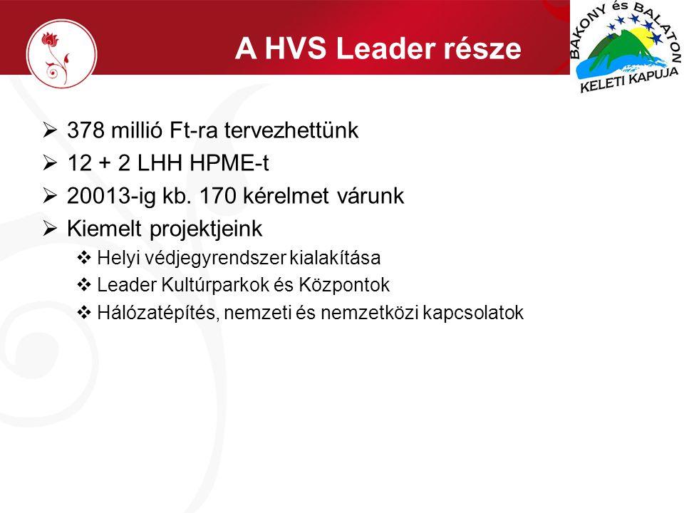 A HVS Leader része  378 millió Ft-ra tervezhettünk  12 + 2 LHH HPME-t  20013-ig kb.