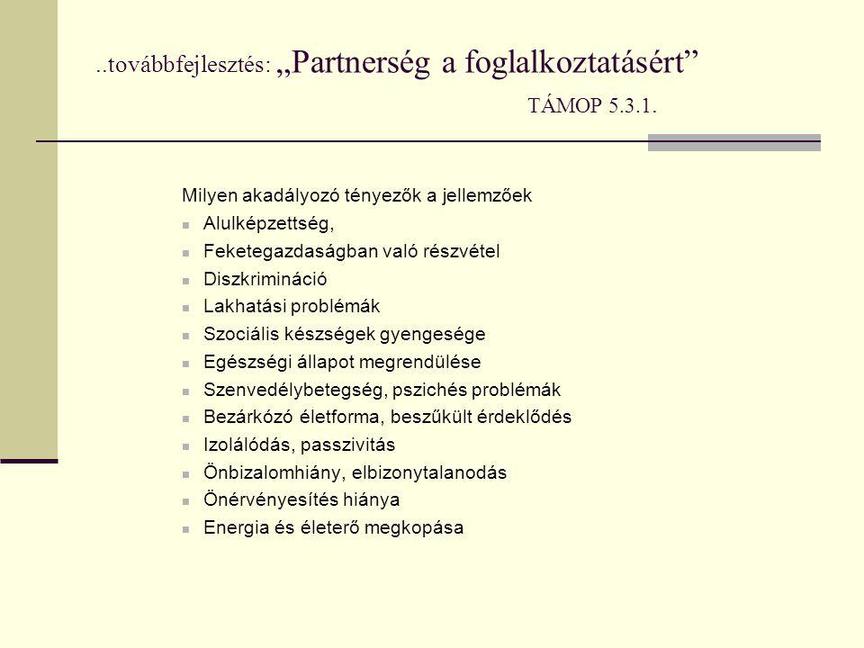 """..továbbfejlesztés: """"Partnerség a foglalkoztatásért"""" TÁMOP 5.3.1. Milyen akadályozó tényezők a jellemzőek  Alulképzettség,  Feketegazdaságban való r"""