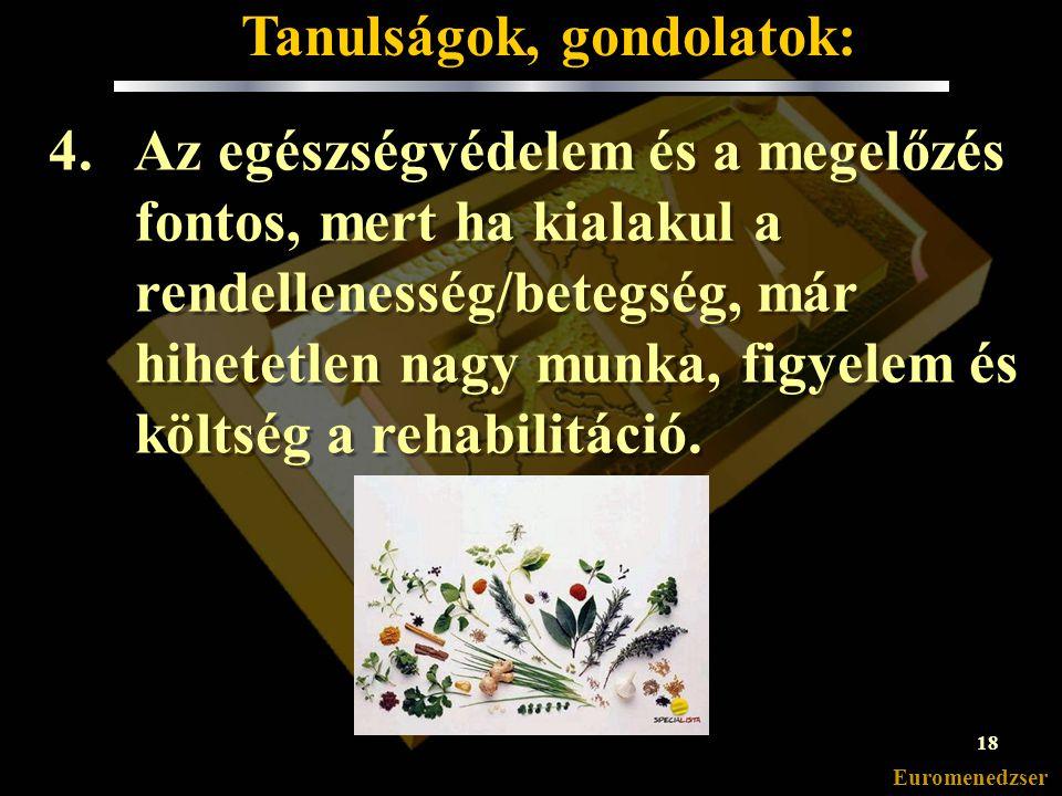 Euromenedzser 3.