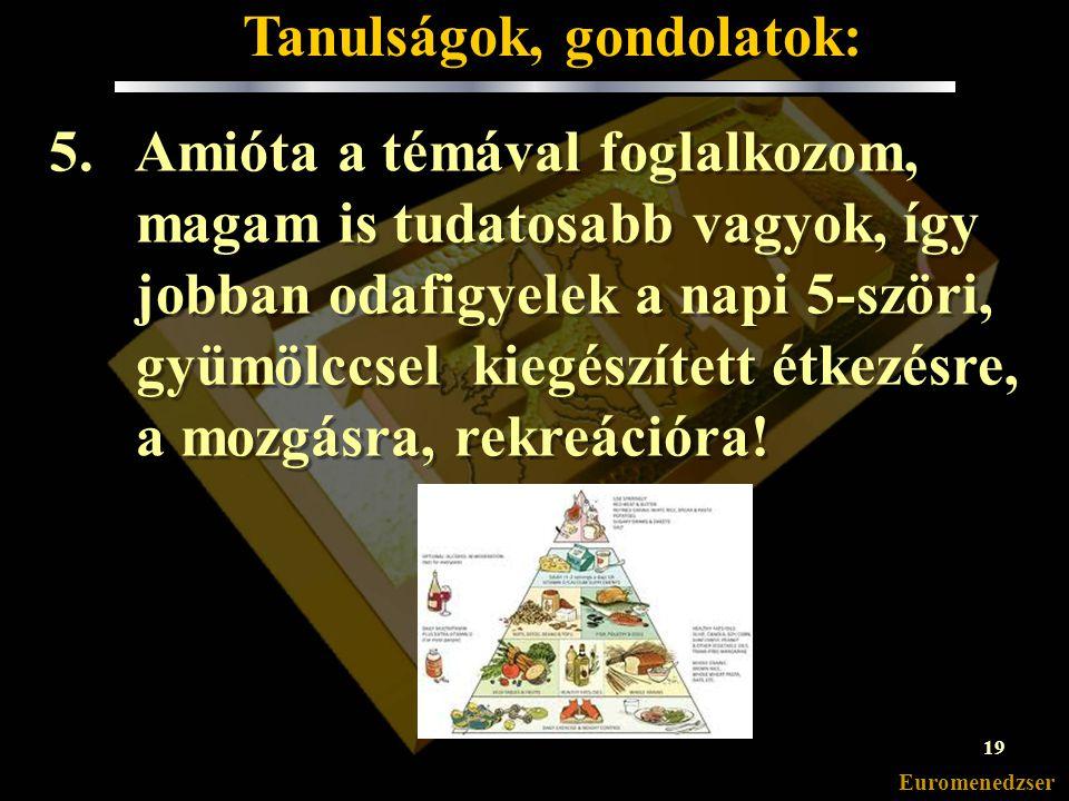 Euromenedzser 4.