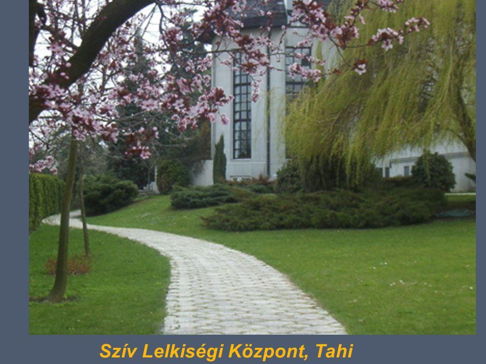 Szív Lelkiségi Központ, Tahi
