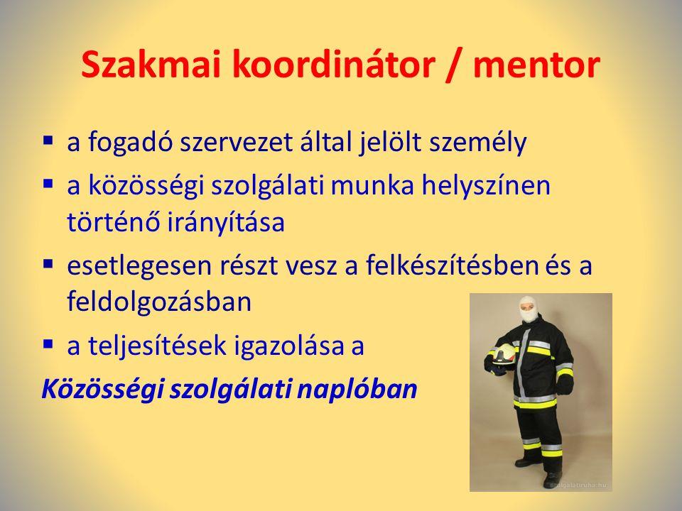 Szakmai koordinátor / mentor  a fogadó szervezet által jelölt személy  a közösségi szolgálati munka helyszínen történő irányítása  esetlegesen rész