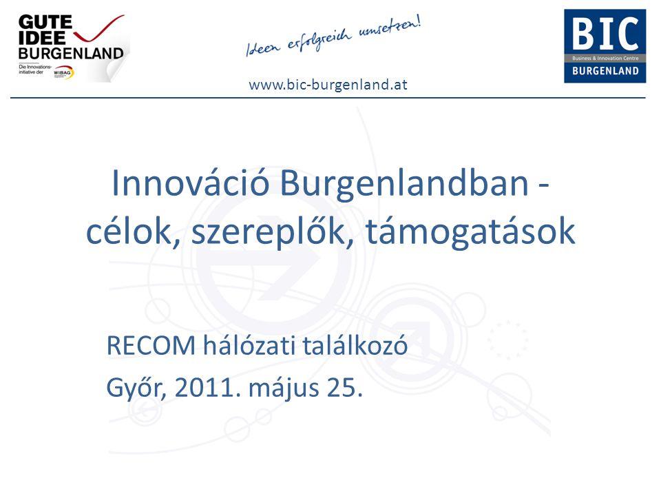 www.bic-burgenland.at Te, Ausztria legifjabb sarja… BurgenlandAusztria országos rangsorban  lakosság: 285.0008,4 millió9  terület:3.965 km²83.879 km²7  GDP6,2 mrd €283 mrd €9 A K+F szektor mutatószámai:  K+F aránya: a GDP0,6%-a  kb.